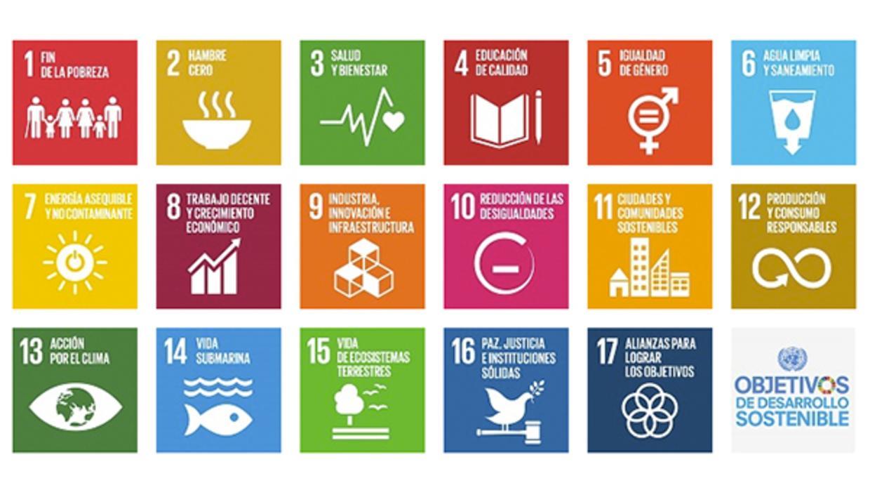 La formación de los actores locales como facilitadora de la consecución de los ODS
