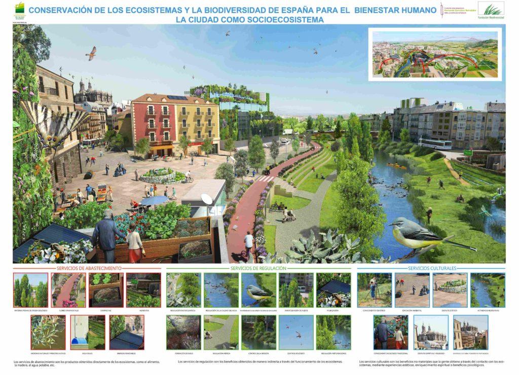 La ciudad como socio-ecosistema