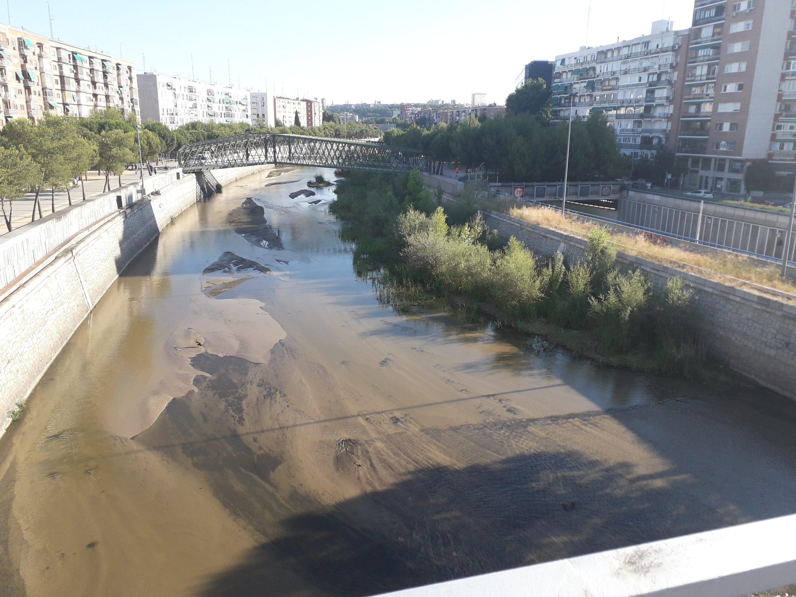 El impacto de las infraestructuras verdes en la ciudad de Madrid