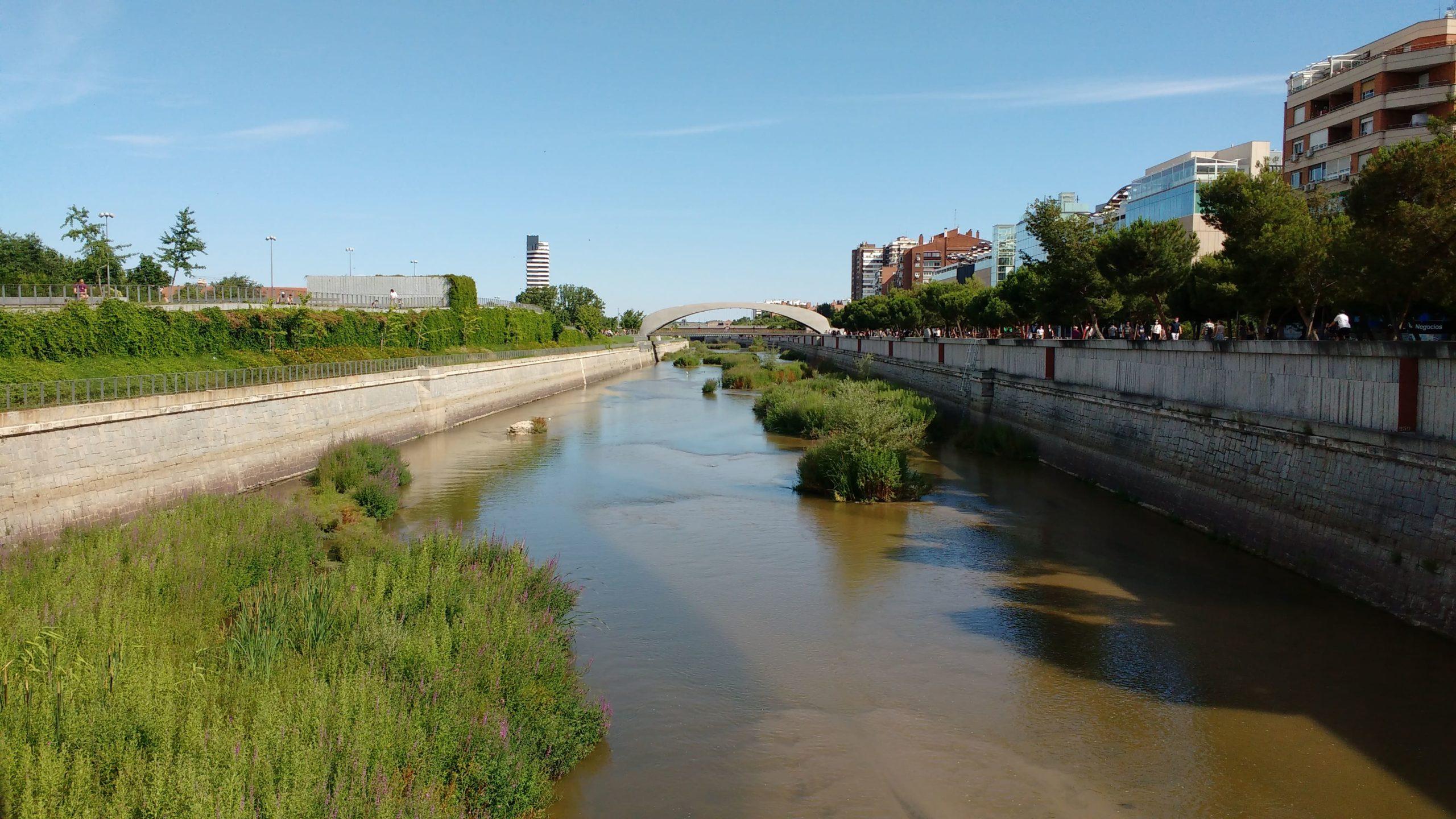 El potencial de la renaturalización del río Manzanares